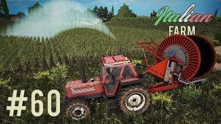 Italian Farm - Compriamo il rotolone #60