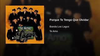Banda Los Lagos - Porque Te Tengo Que Olvidar