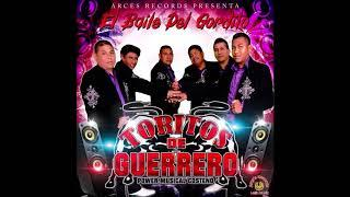Toritos de Guerrero - El Baile Del Gordito (Disco Completo)