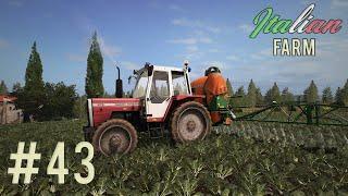 Italian Farm - Aiutiamo i vicini #43