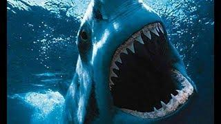 Good Action Movie 2018 - Sea King - Best Hollywood Action Sci Fi movie 2018 - Action Movie 2018