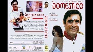 Il Domestico 1974  - Film Completo Italiano - Lando Buzzanca Femi Benussi