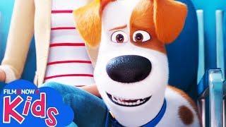 PETS 2 - VITA DA ANIMALI (2019) | Trailer del sequel dedicato al cagnolino Max!