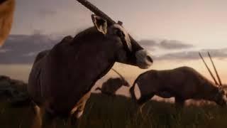 IL RE LEONE - Trailer Ufficiale Italiano (2019) I HD + FILM COMPLETO IN DESC