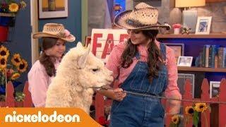 I Thunderman | Alpaca in salotto | Nickelodeon Italia