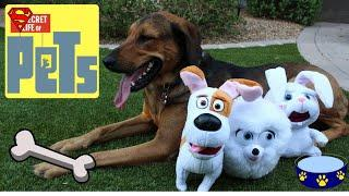 The SECRET LIFE OF PETS Talking Plush Buddies feat SNOWBALL, MAX, GIDGET and SANDY 2018
