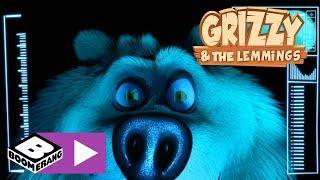 Grizzy en de Lemmings | Gevecht tegen de drone | Boomerang