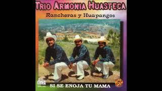 Trio Armonia Huasteca - Rancheras y Huapangos (Disco Completo)