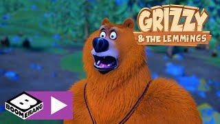 Grizzy und die Lemminge | Nacht unter den Sternen | Boomerang