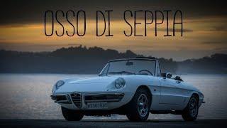 Alfa Romeo Duetto - Osso di seppia - Roadmantics Ep 11