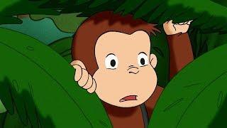 Curioso come George ???? La Settimana della Natura ???? Cartoni Animati per Bambini ????  Episodio C