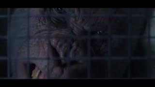 Rampage – Furia animale Film Completo 4K italiano