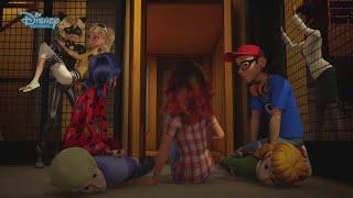 Miraculous - Le storie di Ladybug e Chat Noir - Corsa contro il tempo - Dall'episodio 41