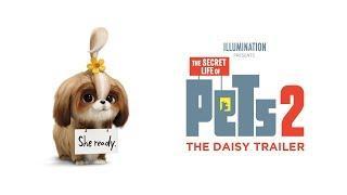 Secret Life Of Pets 2 - Tráiler Oficial