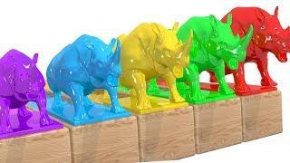 Impara i colori in italiano con i Rinoceronti e la piscina colorata. Imparare i colori per bambini